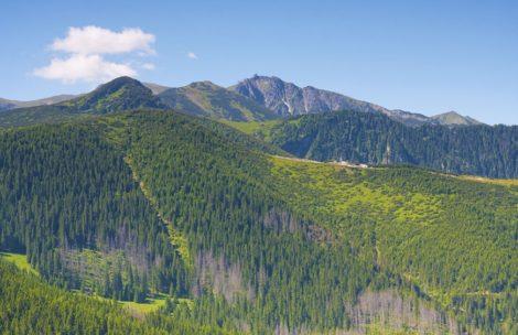 Od czwartku poprawa pogody w Tatrach