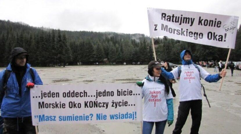 Trwa protest na drodze do Morskiego Oka