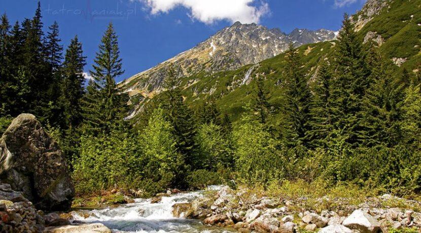 Tatrzańskie doliny: DOLINA ROZTOKI