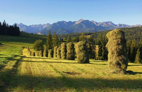 W weekend poprawa pogody w Tatrach!