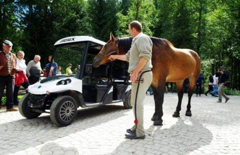 Meleksy nie przeszły. Konie nadal będą wozić turystów do Morskiego Oka