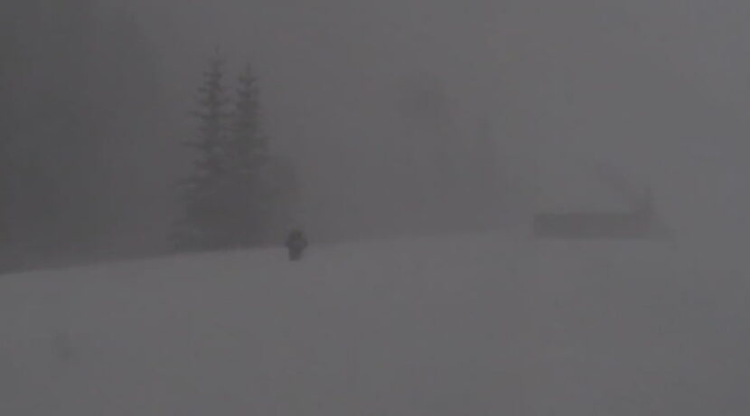 Zamieć śnieżna na Polanie Chochołowskiej (film)