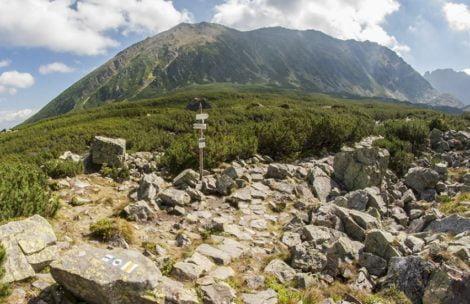 Aparat fotograficzny zostawiony na szlaku, prośba do znalazców