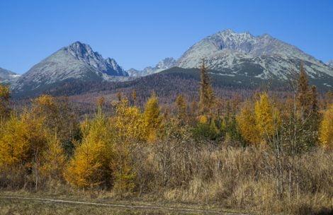 Piękne barwy jesieni w Tatrach Słowackich. Korzystajcie póki czas!