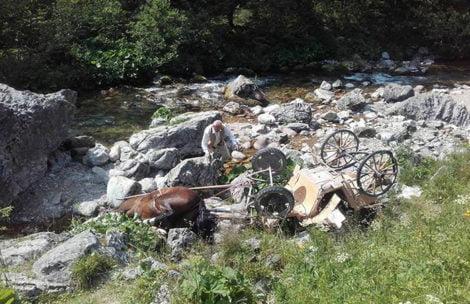 Koń z dorożką wpadł do potoku w Dolinie Kościeliskiej