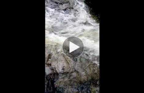 Rwący potok wylał na szlak. Tak dziś wyglądały tatrzańskie doliny (FILM)
