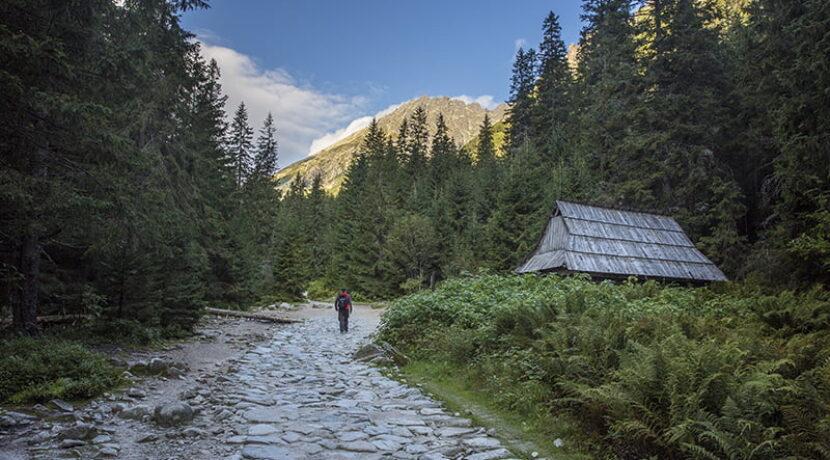 W Tatrach znaleziono kolejne ludzkie szczątki