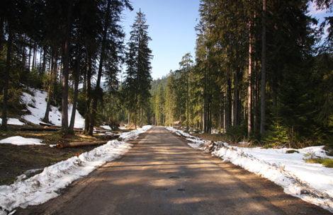 Turysta zgubił się w Dolinie Chochołowskiej