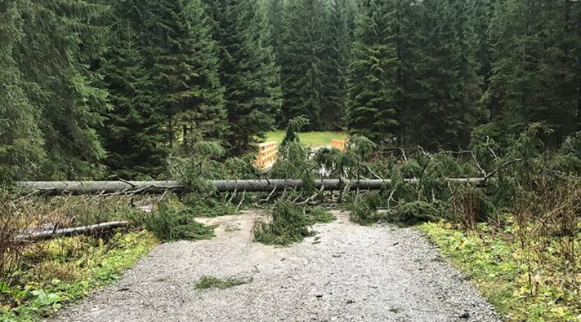 Wichura w Tatrach! Nieprzejezdna droga do Morskiego Oka, nie wychodźcie w góry!