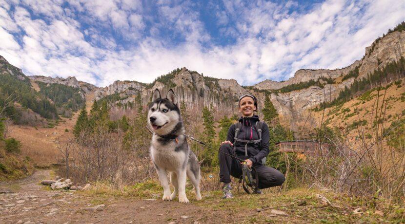 Koniec wycieczek z psami po Tatrach Słowackich? To nowy projekt ochrony TANAP-u
