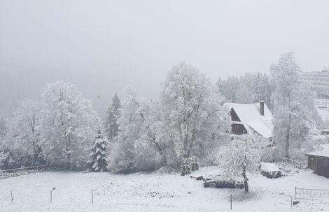 Kolejny powrót zimy! Pod Tatrami znowu biało