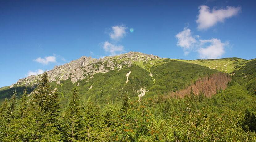 Częściowo osunięta ścieżka na szlaku. Tatrzański Park Narodowy ostrzega