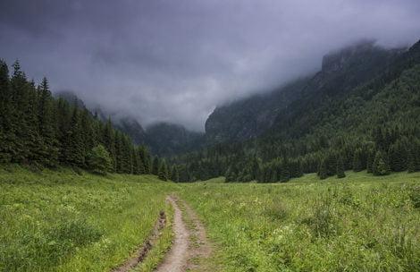 W tatrzańskich lasach ukrywa się żołnierz ze Wschodu? Może być niebezpieczny!