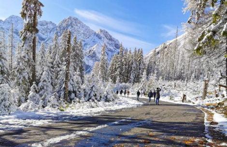 W Tatrach dziś bajkowe, zimowe widoki (ZDJĘCIA)