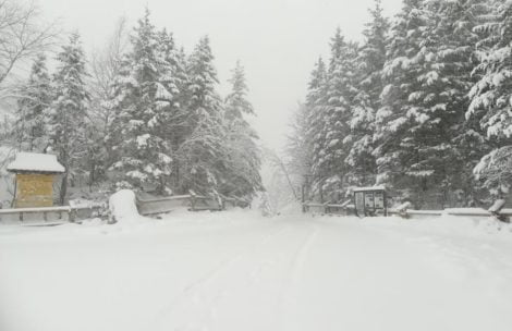 Prognozy dla Tatr: spadnie ponad metr śniegu