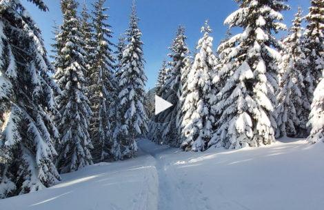 Bajkowa zima w Tatrach. Tak wyglądają obecnie szlaki (FILM)
