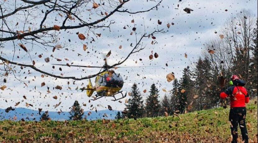 Pieniny: turysta pod wpływem alkoholu chciał przejść po złamanym drzewie. Spadł z wysokości 4 metrów