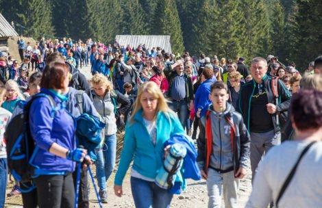 Tak wyglądała Dolina Chochołowska trzy lata temu. Rekordowa liczba turystów (ZDJĘCIA)