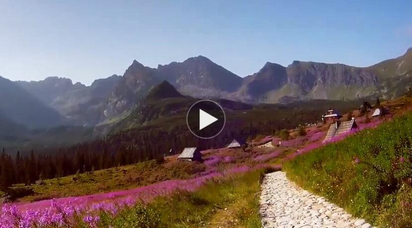 """""""Szczytami i dolinami Tatr…"""" – filmik dla wszystkich tęskniących"""