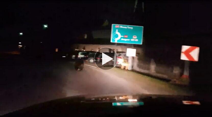 Nocne spotkanie z niedźwiedziem w Bukowinie Tatrzańskiej (FILM)