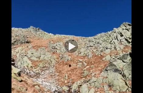 Kozica pędząca w dół żlebu w Tatrach Wysokich, co za tempo! (FILM)