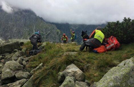 Tragedia w Tatrach. Znaleziono ciało turystki, przy nim czuwał pies
